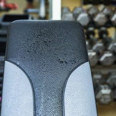 DSC_8525 sweaty bench.jpg