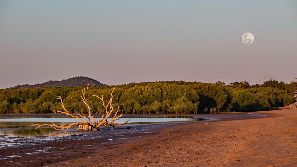 Moon rise at Bushland Beach, Qld AU