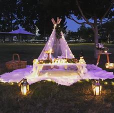sunset picnic.PNG