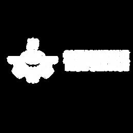 Logos Innboa-03.png