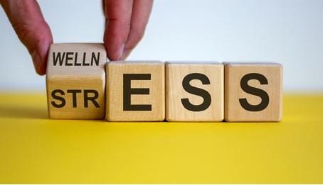 Stress & Health: Week 2 Fall Challenge