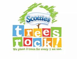 scotties trees rock