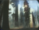 """Still from the Sequoia Kings Canyon National Park Videotape Collection, """"Non-edited Video Footage: Giant Forest Restoration Project –Restoration Work in the Round Meadow Area (Tape 5 of 6),"""" VHS, color silent, 1999"""
