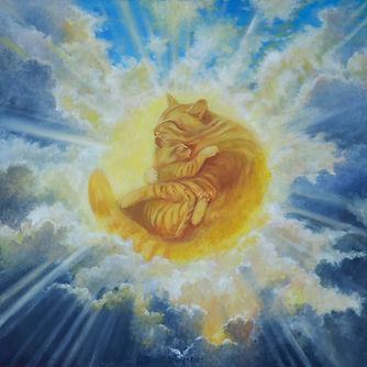 Солнцекот. Аркадий Бабич