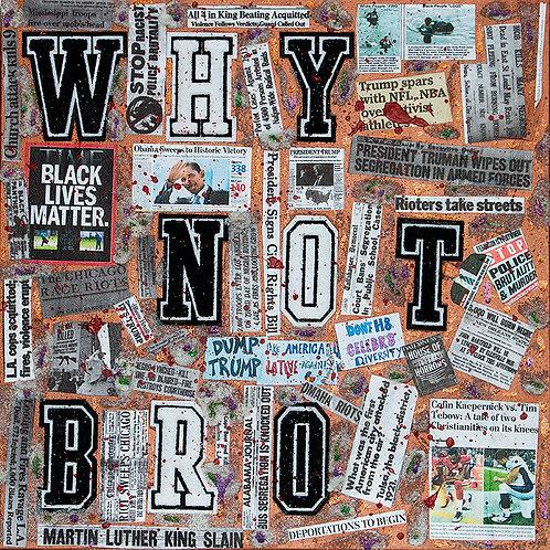 Why Not Bro, 2017