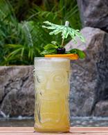 after_image_studio_costa_tiki_drinks_II-