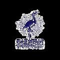 Blue Heron Chiropractic Logo.png