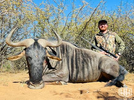 Adam Blue Wildebeest.jpg