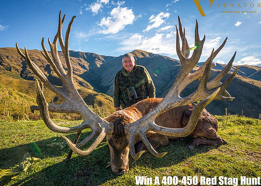 red stag hunt 2.JPG