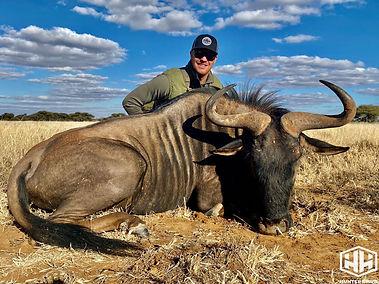 Alex blue wildebeest.jpg