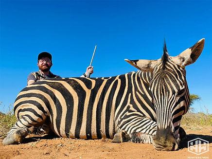 Adam Zebra.jpg