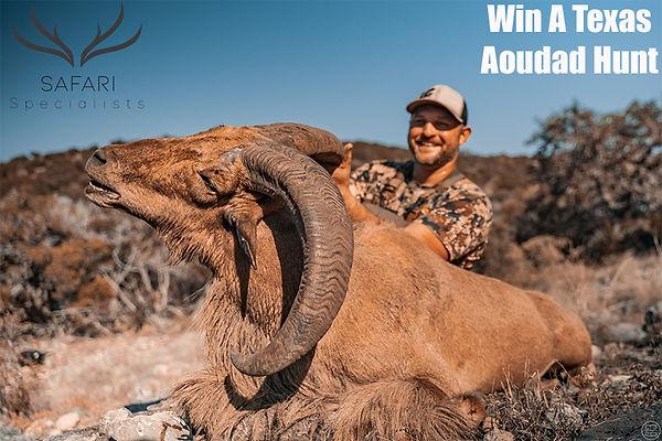 win a aoudad hunt.jpg