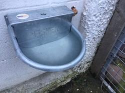 Animal water feeder