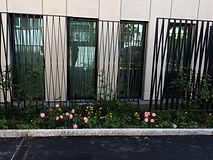 Bepflanzung Klinik Linde (3).JPG