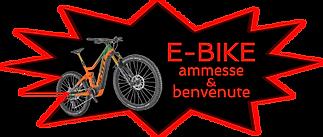 E-Bike Ammesse.png