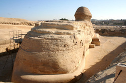 Back of Sphinx