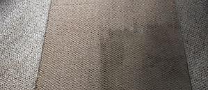 carpet cover.jpg