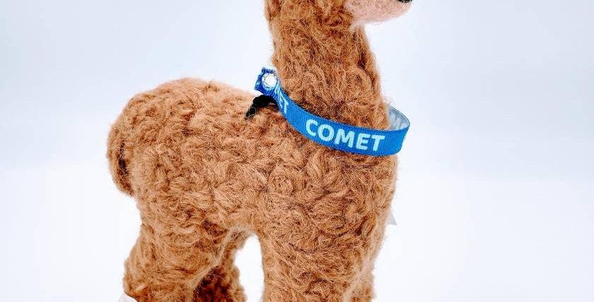 "8"" Felted Alpaca - with Comet collar"