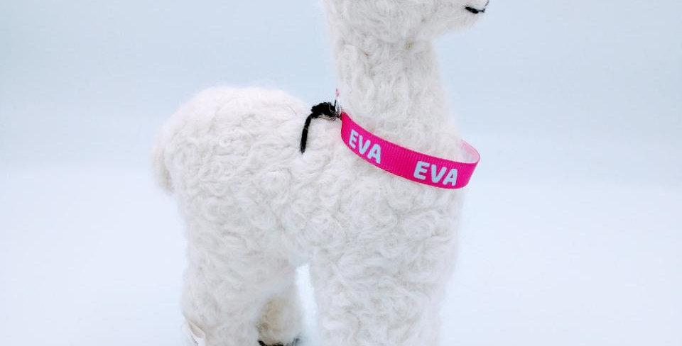 "8"" Felted Alpaca - white with Eva collar"