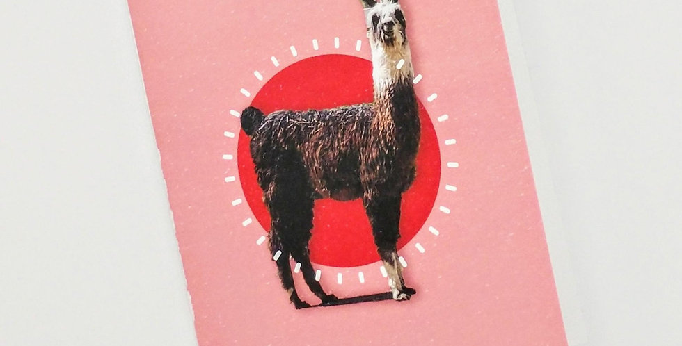 Thanks a Llama greeting card