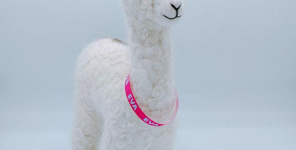 12″ Alpaca Fiber Sculpture - with Eva collar