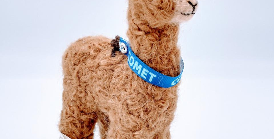6.5″ Alpaca Fiber Sculpture - with Comet collar