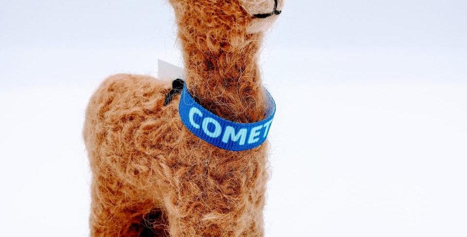 5.5″ Alpaca Fiber Sculpture with a Collar