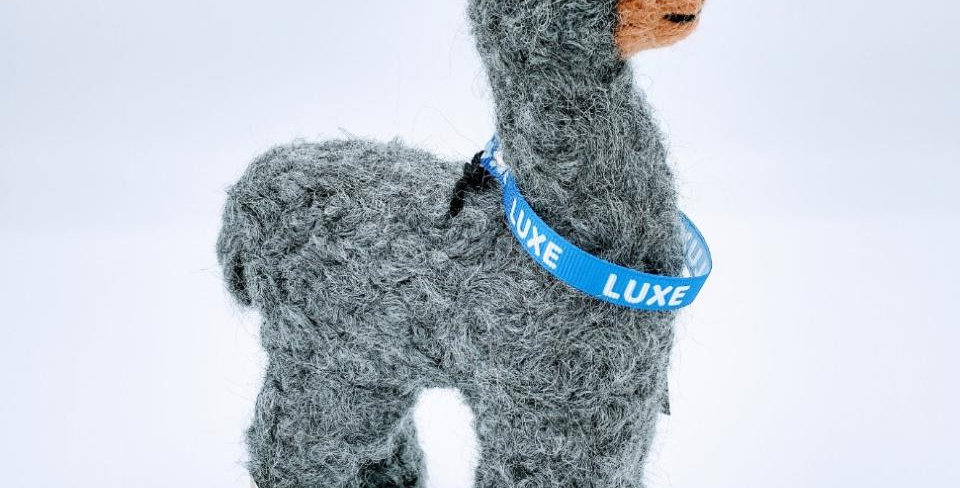"""8"""" Felted Alpaca - with Luxe collar"""
