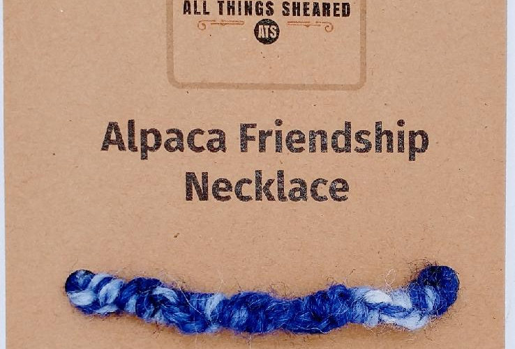 Handmade spiral necklace