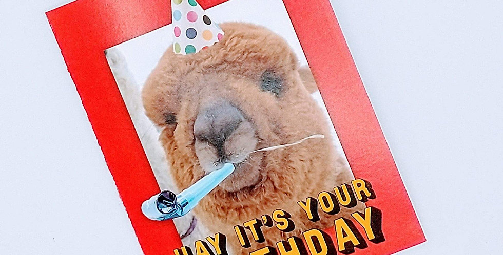 Comet Birthday greeting card