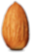 real almond.png