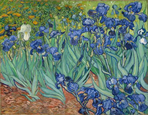 vincent-van-gogh-les-iris-1889.jpg