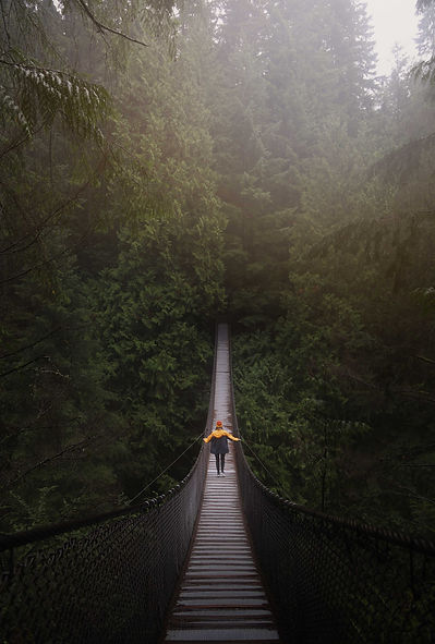 Picture of person on suspension bridge in forest
