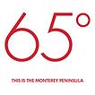65 degree logo.png