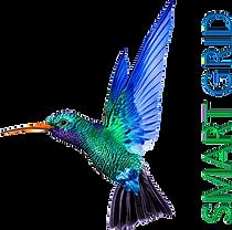 Logo_Smart_Grid.png