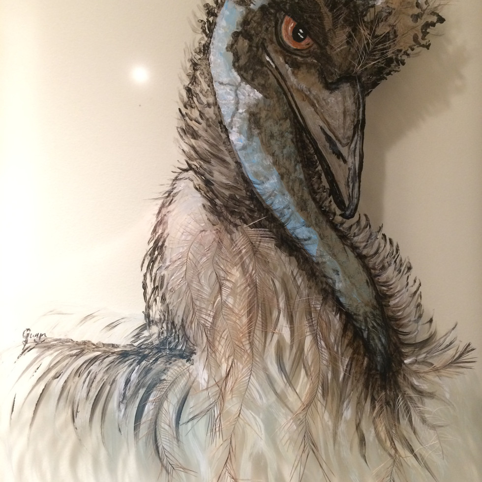 Emu Relections