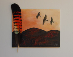 RedTail Feather