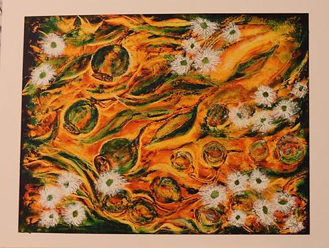 Eucalyptus seeds and flowers