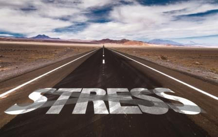 Truck driver stress