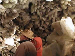 Heinemann's Winery & Crystal Cave