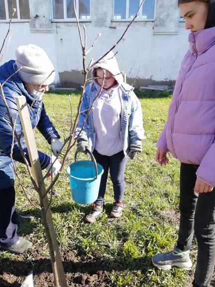 Весенний уход за яблонями в саду колледжа гр.39 под руководством Даутовой И.Р. и Искандаровой С.В.