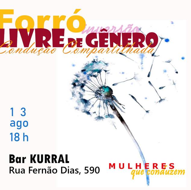 BAILE DE FORRÓ LIVRE DE GÊNEROpg