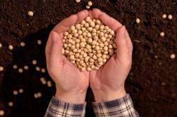 Investors in Agribusiness
