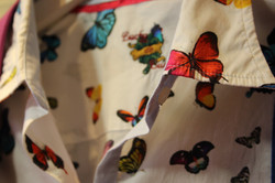 Butterfly - Motiv 2017