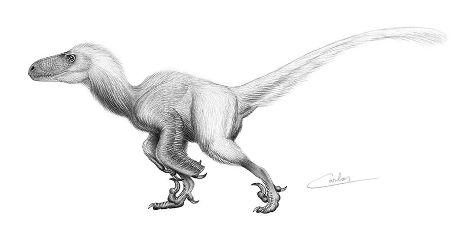 Utahraptor (2015)