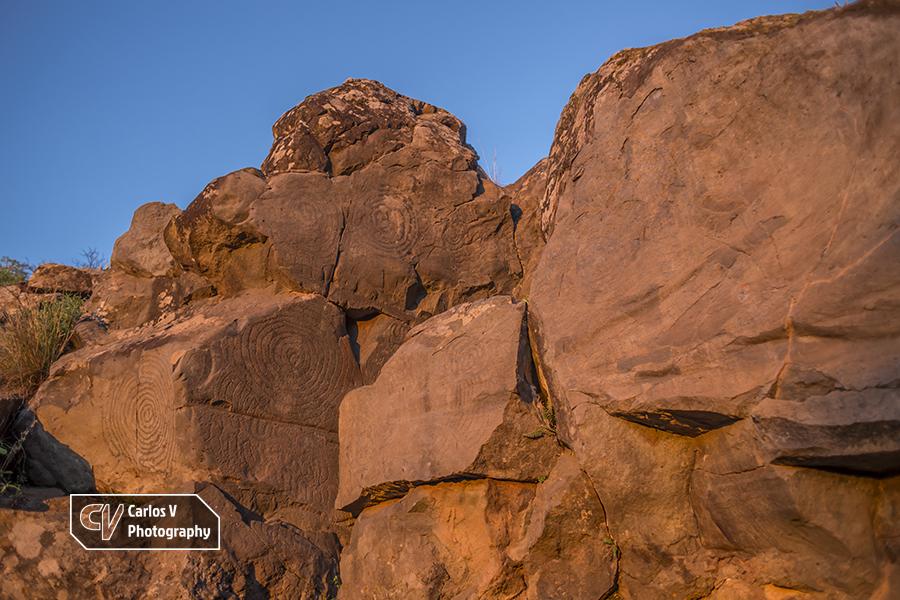 Spiriform petroglyphs above the caves of El Verde, La Palma.  © Carlos Vermeersch
