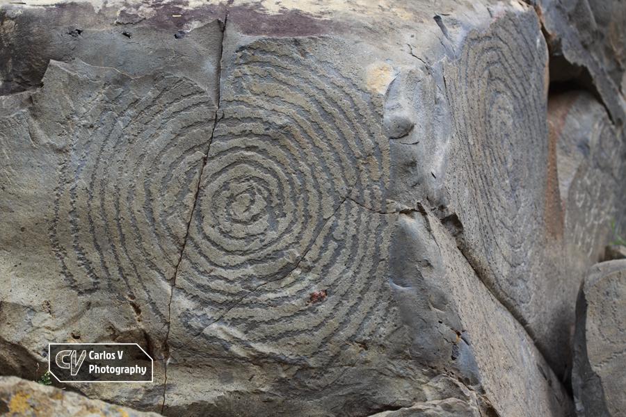 Spiriform petroglyphs at El Verde, La Palma.  © Carlos Vermeersch