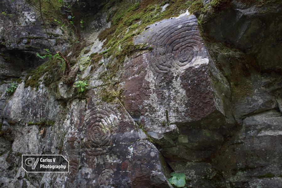 Circular petroglyphs at La Zarza, Garafía, La Palma.  © Carlos Vermeersch