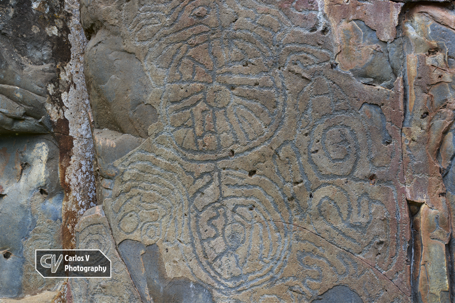 Circular petroglyphs at La Fajana, La Palma. These engravings are the most remarkable of this station, and occupy a privileged situation in the panel. The perimeter of the upper motif is composed by two concentric circles from which 20 lines coalesce towards a central circle. The lower motif is smaller and simpler, with three concentric circles with meandriform lines in its interior.   © Carlos Vermeersch