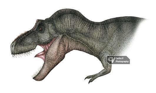 Tyrannosaurus (2010)